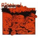 Flachenbrand- Area Conflagration: German Hardcore 1993-2003