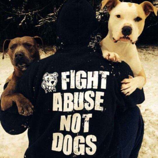 Fight Abuse, Not Dogs