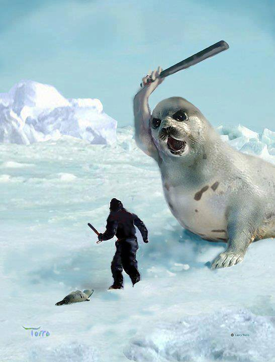 Image result for seal club beat