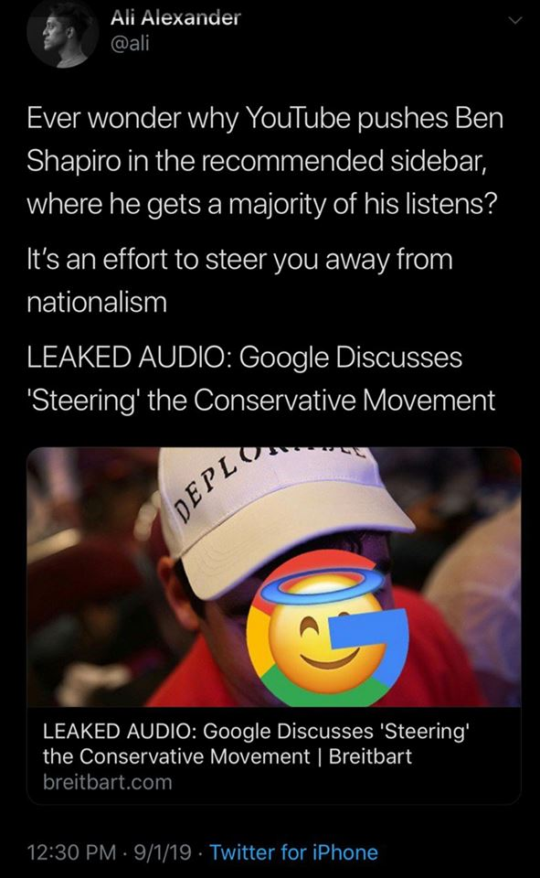 Google & Controlled Opposition