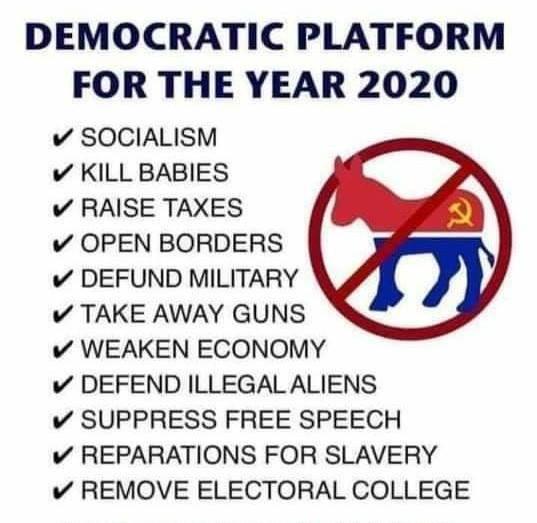 Meme Alert: Democrat Platform 2020