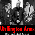 Wellington Arms- Complete Demos