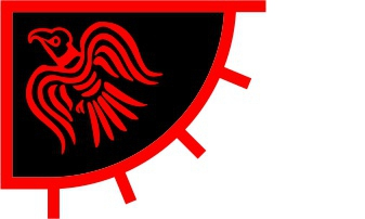 Viking Raven Banner